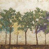Arbor Discourse I