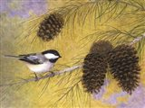 Chickadee in the Pines I