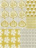 Marigold Patterns I