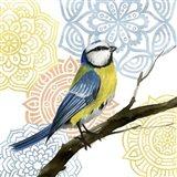 Mandala Bird I