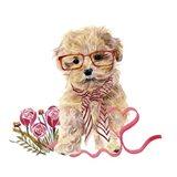 Valentine Puppy II