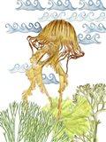 Undersea Creatures IV