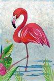 Vivid Flamingo I