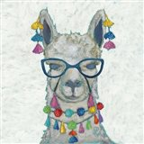 Llama Love with Glasses II
