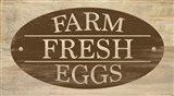 Farm Store I