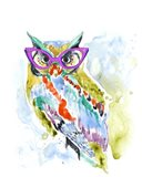 Smarty-Pants Owl