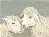 Sweet Lambs II