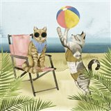 Coastal Kitties I
