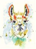 Hifi Llama I