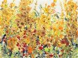 Golden Summer Garden II