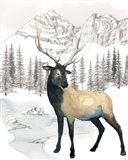 Winter Elk I
