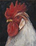 Rooster Portrait II