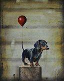 Stanley's Balloon