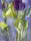 Violet Spring Flowers II