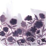 Ultra Violets II