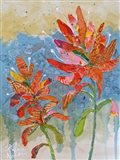 Indian Paintbrush Collage II