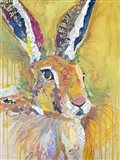 Harriet The Hare