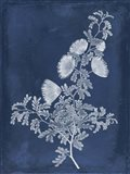 Botanical in Indigo IV