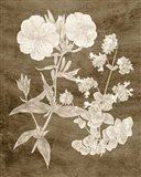 Botanical in Taupe II