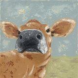Farm Life-Cow
