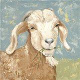 Farm Life-Brown Goat
