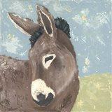 Farm Life-Donkey