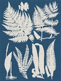 Linen & Blue Ferns I