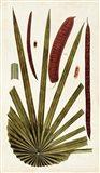 Leaf Varieties VI