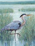 Wetland Heron I