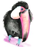 Technicolor Toucan I