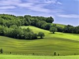 Pastoral Countryside II