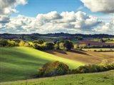 Pastoral Countryside III