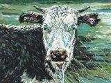 Marshland Cow I