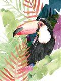 Toucan Palms I