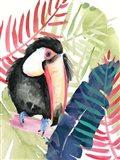 Toucan Palms II