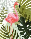 Flamingo Forest II