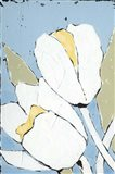White Tulip Triptych I