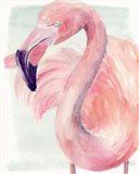 Pastel Flamingo I