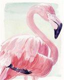 Pastel Flamingo II