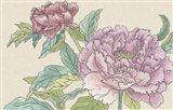 Peony Blooms I