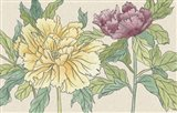 Peony Blooms II