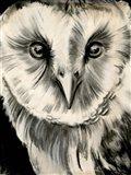 Charcoal Owl II