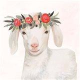 Garden Goat IV