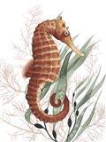 Seahorse Treasures I