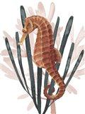 Seahorse Treasures II