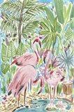 Flamingo Paradise II