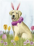 Puppy Easter I