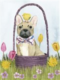Puppy Easter III