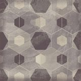 Hexagon Tile IV