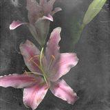 Fleur de Lys I